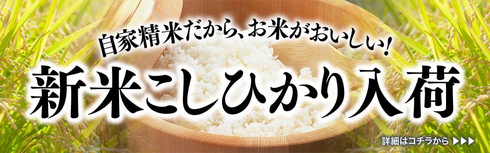 【新米入荷】おいしいお米